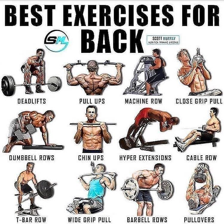 Please follow and like Follow@workout.gym.tips for more workout tips- Dm Credit : respective o...