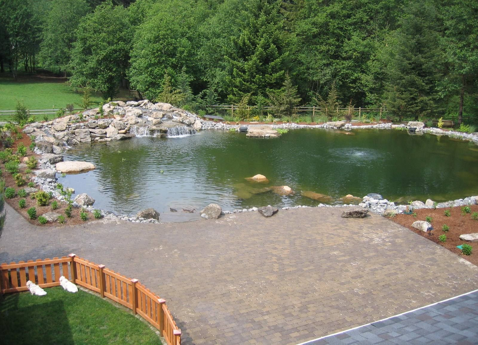 Landscaping vancouver washington complete with large for Giant koi pond