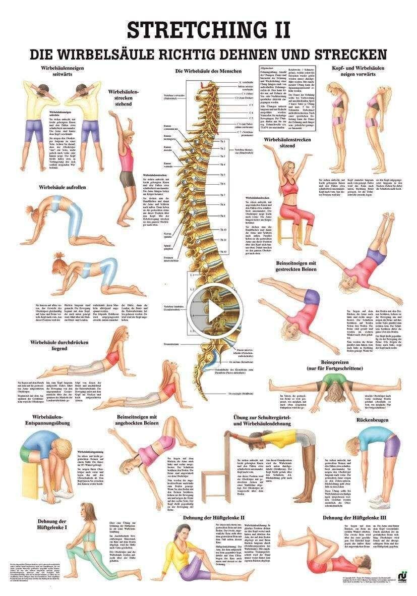 #aerobicübungen #fitnesstipps #fitnesstips #pinterest #training #fitness #aerobic #für #exer #pin #v...