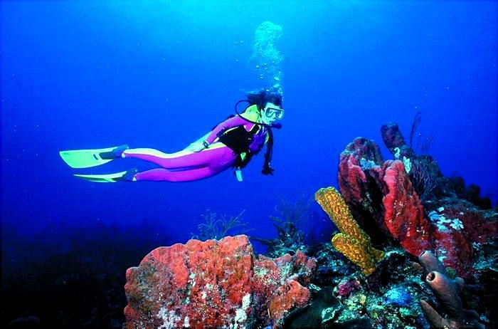 Outdoor Activity Scuba Diving Diving Scuba Diver Girls