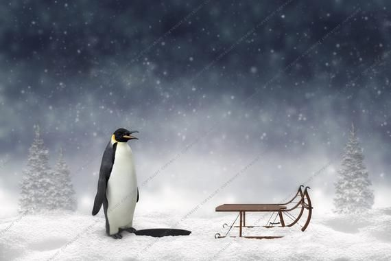 Ice Fishing Winter Background for Photographers / Christmas Backdrop for Photography / Digital Downloads & Overlays / Winter Backdrops #backdropsforphotographs