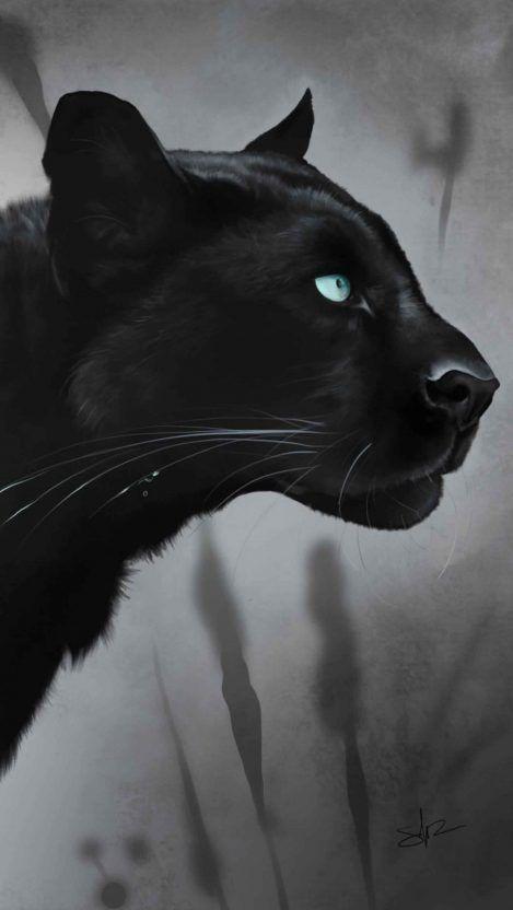 Black Jaguar Iphone Wallpaper Free Getintopik In 2020 Black Jaguar Cat Silhouette Jaguar Wallpaper