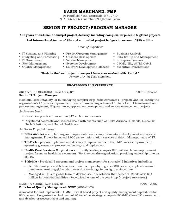 It Resume Samples It Project Managerpage1  It Resume Samples  Pinterest  Free