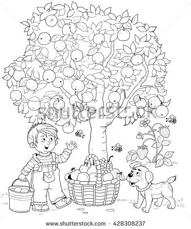 A Cute Boy And His Puppy Picking Apples Basket Full Of Different Fruits Coloring Page