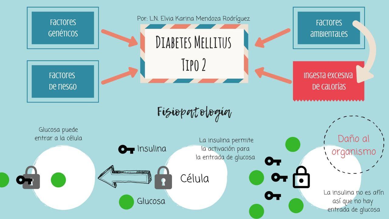 imágenes de fisiopatología de la diabetes tipo 2