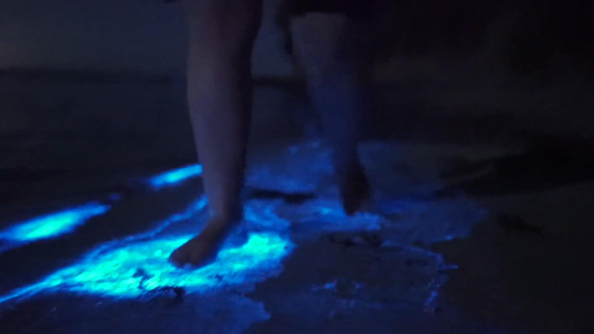 Le bleu bioluminescent est une belle couleur. Merci plancton, tu resplendis si bien.