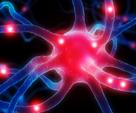 NEURO RESTART® nahrávky - http://www.neurorestart.com?a_box=q8w4jrky&a_cam=11