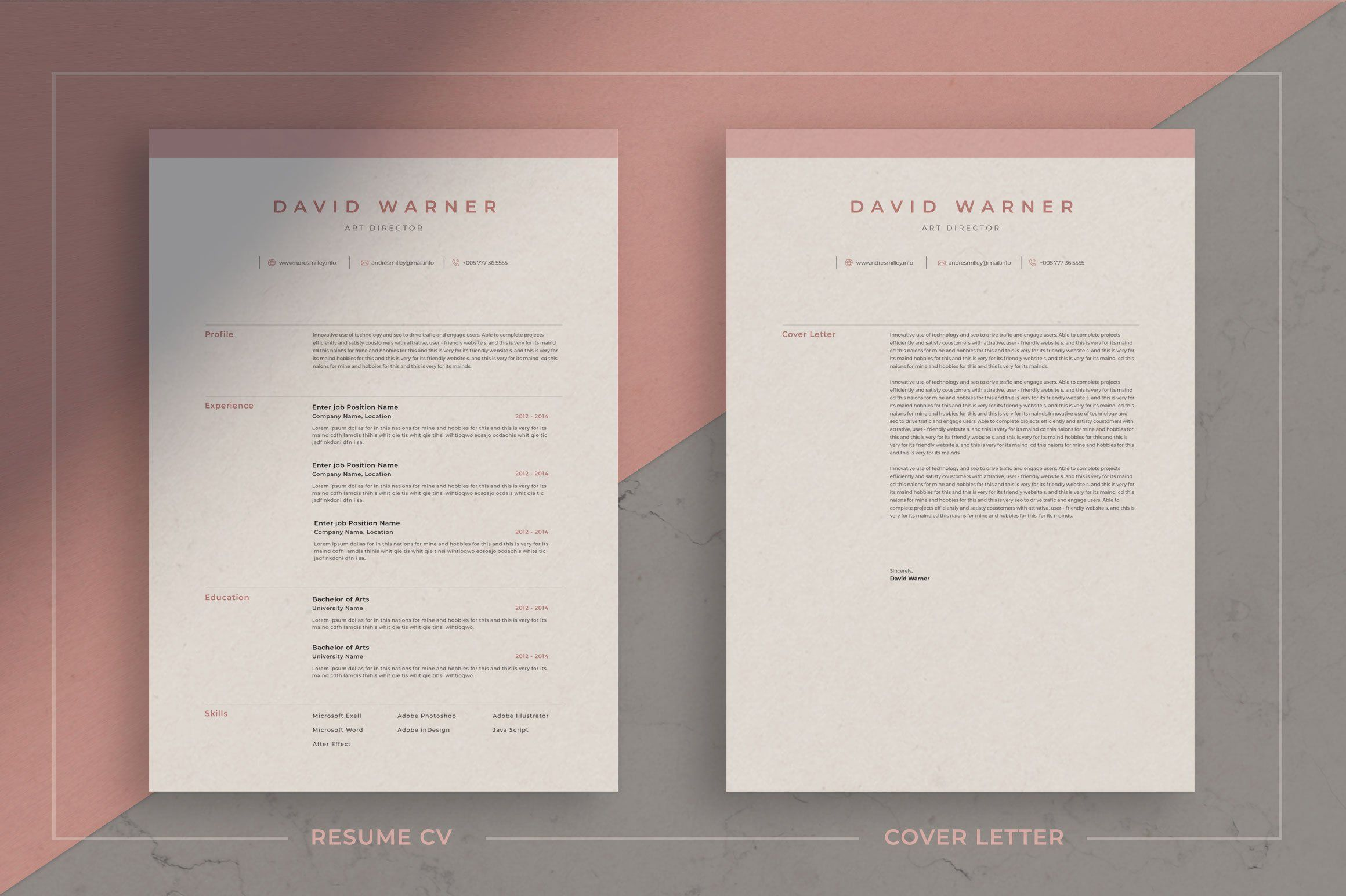 Resume  CV Template For those looking for a professional template David offers a skillfully crafted design plus matching cover letter including sample letter for a comple...