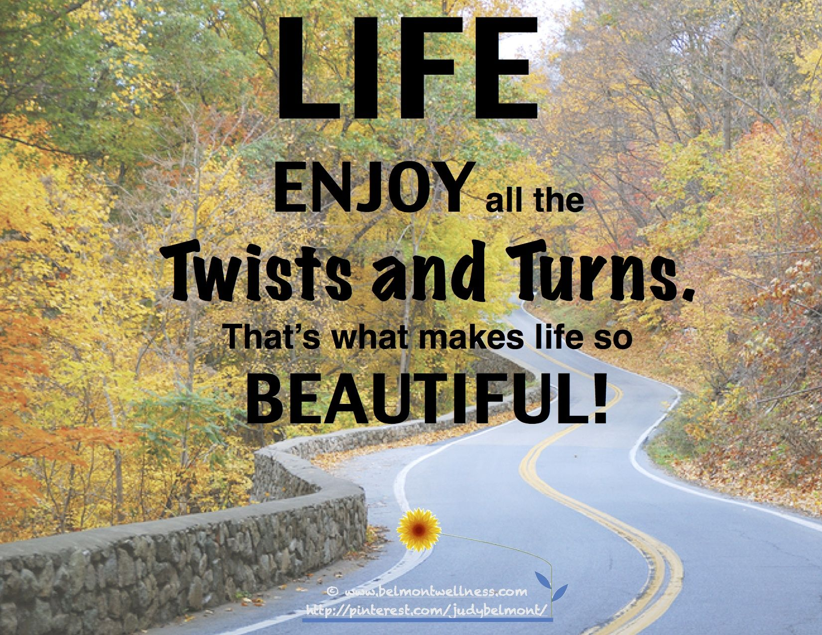 Enjoy life's twists and turns! Positivity, Positive