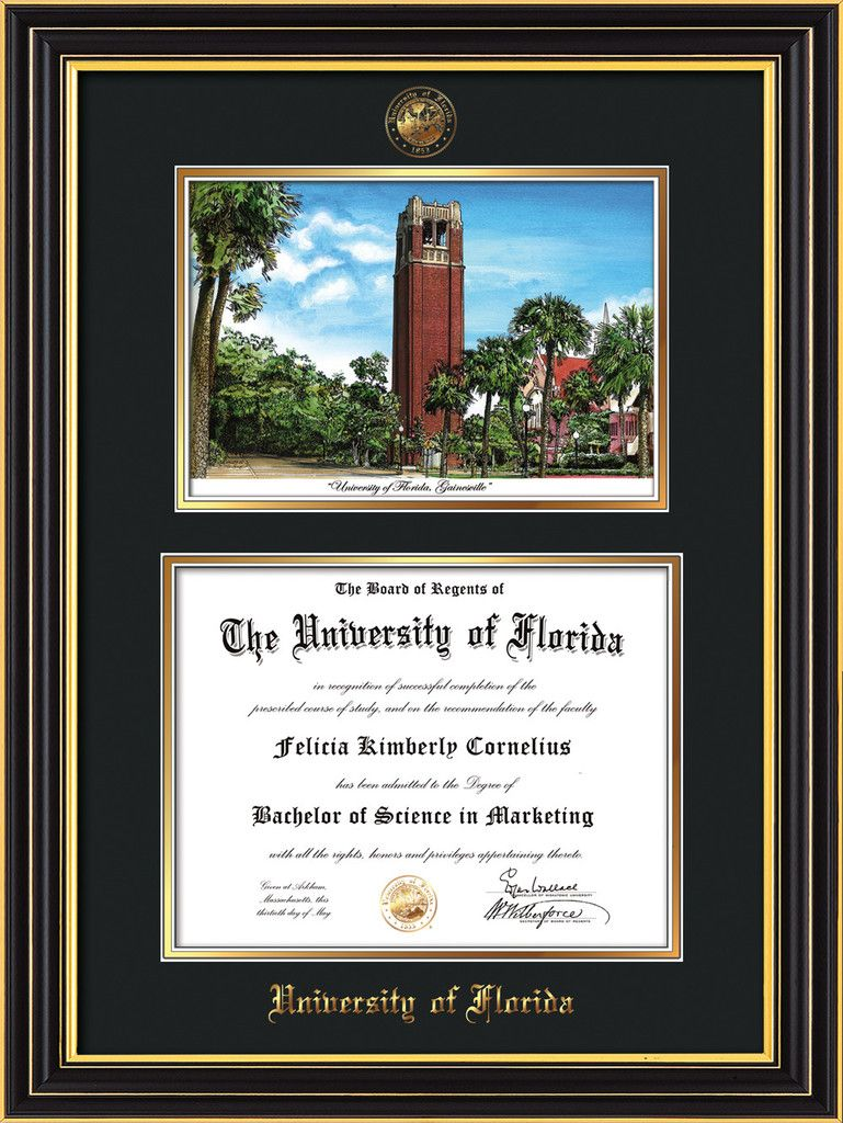 university of florida diploma frame satin black watercolor blackgold professional