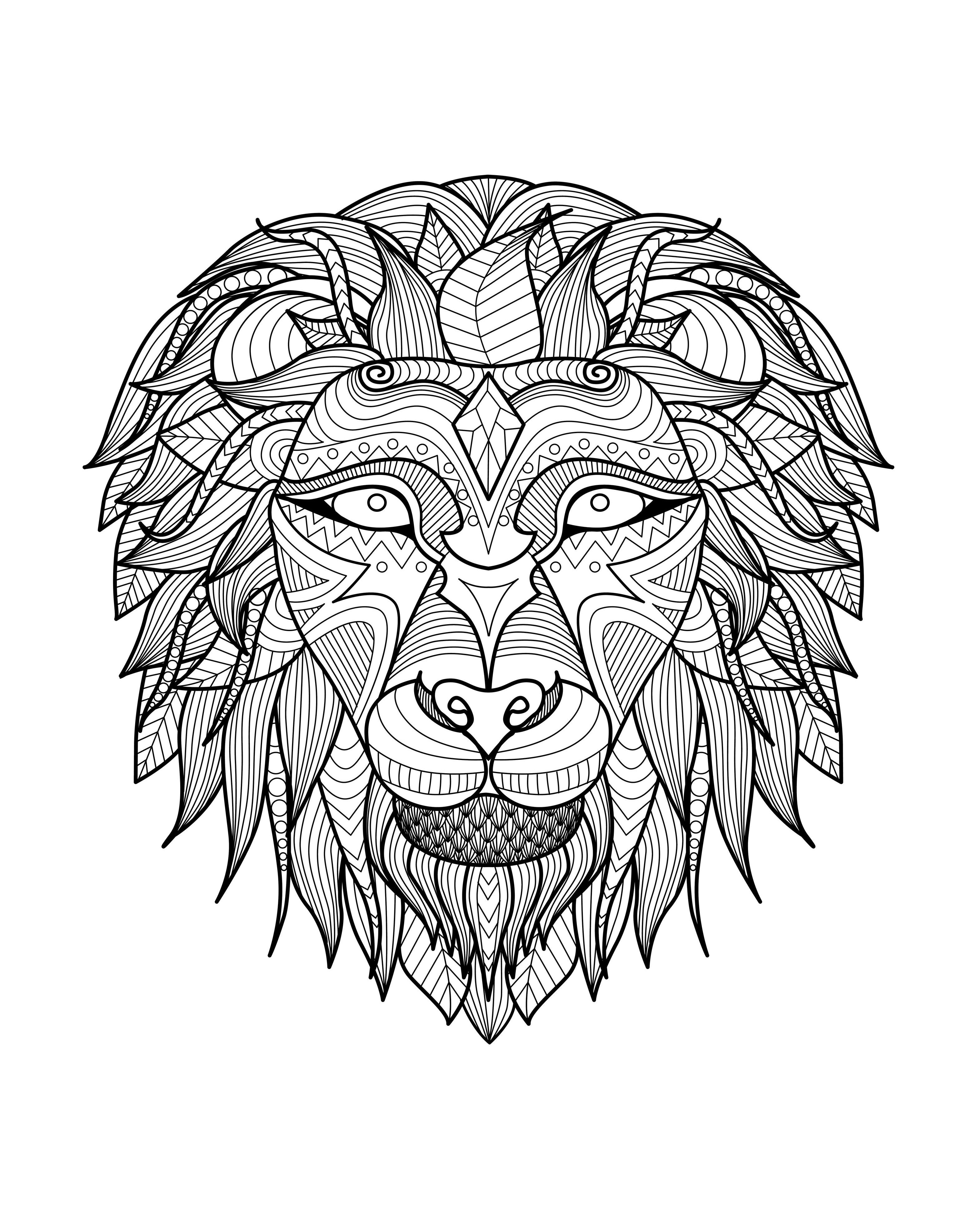 Free Coloring Page Coloring Adult Africa Lion Head 2 Magnificient