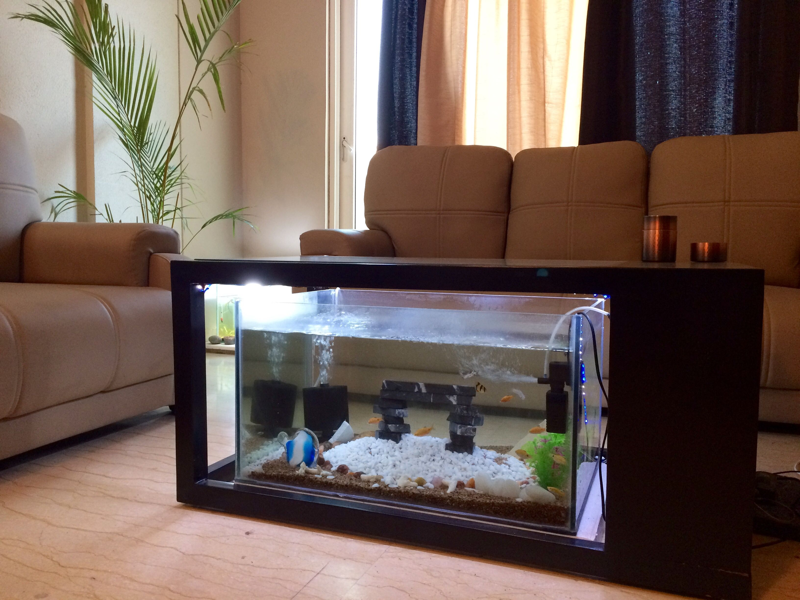Aquarium center table (With images) | Center table, Decor ...