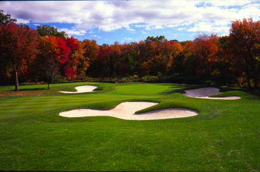 13++ Arlington golf vet ideas in 2021