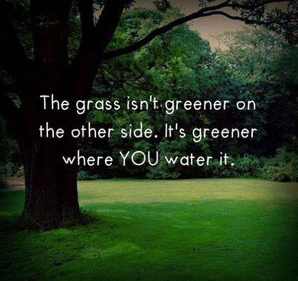The grass isn't greener..... #Quotes #Daily #Famous #Inspiration #Friends #Life #Awesome #Nature #Love #Powerful #Great #Amazing #everyday #teen #Motivational #Wisdom #Insurance #Beautiful #Emotional  #Top #life #Famous #Success #Best #funny #Positive #thoughtfull #educational #gratitiude #moving  #halloween #happiness #anniversary #birthday #movie #country #islam #one #onesses #fajr #prayer #rumi #sad #heartbreak #pain #heart #death #depression #you #suicide #poetry