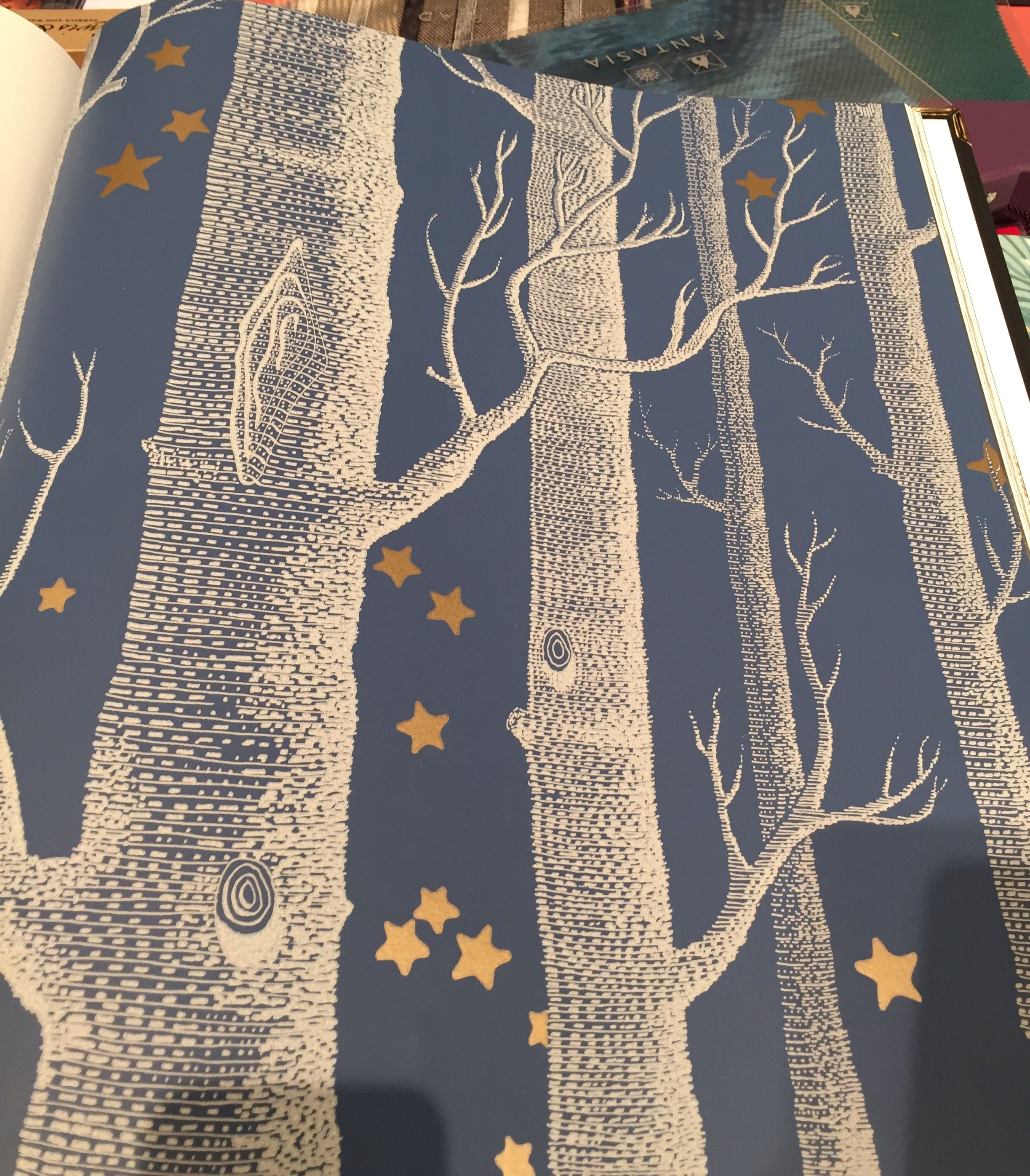 Cole And Sons Woods And Stars Birches Wallpaper Birch Tree