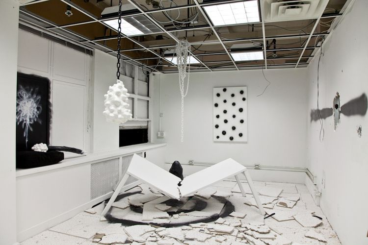 Jack Greer, The Culmination of the Studio, As a Gallery, As a Dream, 2010 Various media