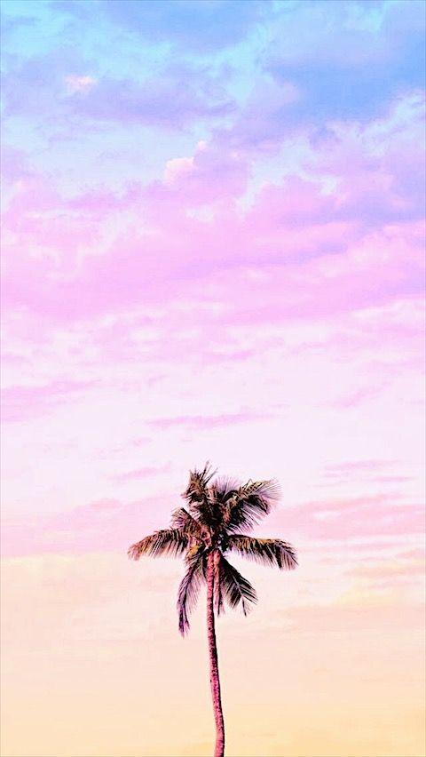 Pin By John Taylor On Image Tree Wallpaper Iphone Pastel Color Wallpaper Wallpaper Iphone Summer