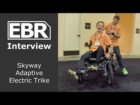 Skyway Happy Trike S320T Electric (Special Needs, Child Transport, Cargo Hauling)