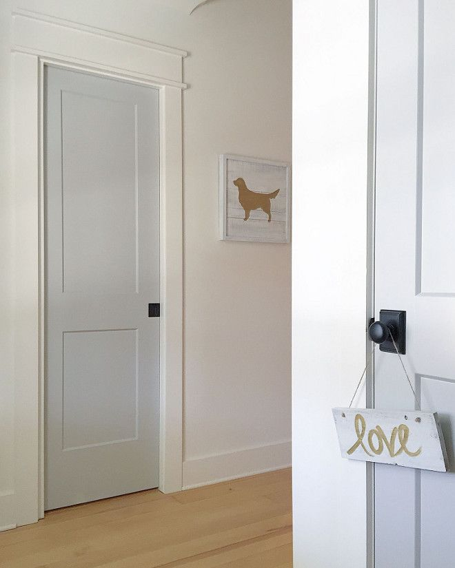 Sherwin Williams Mindful Gray At 50 Strength Grey Door Paint