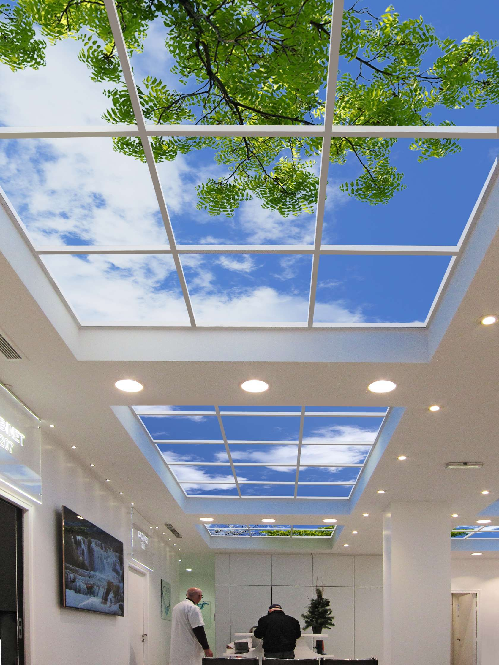 Sky Factory Luminous Skyceilings Virtual Skylights Faithfully Reproduce The Subtle Visual Stimuli Of Real These Award Winning Use Fac