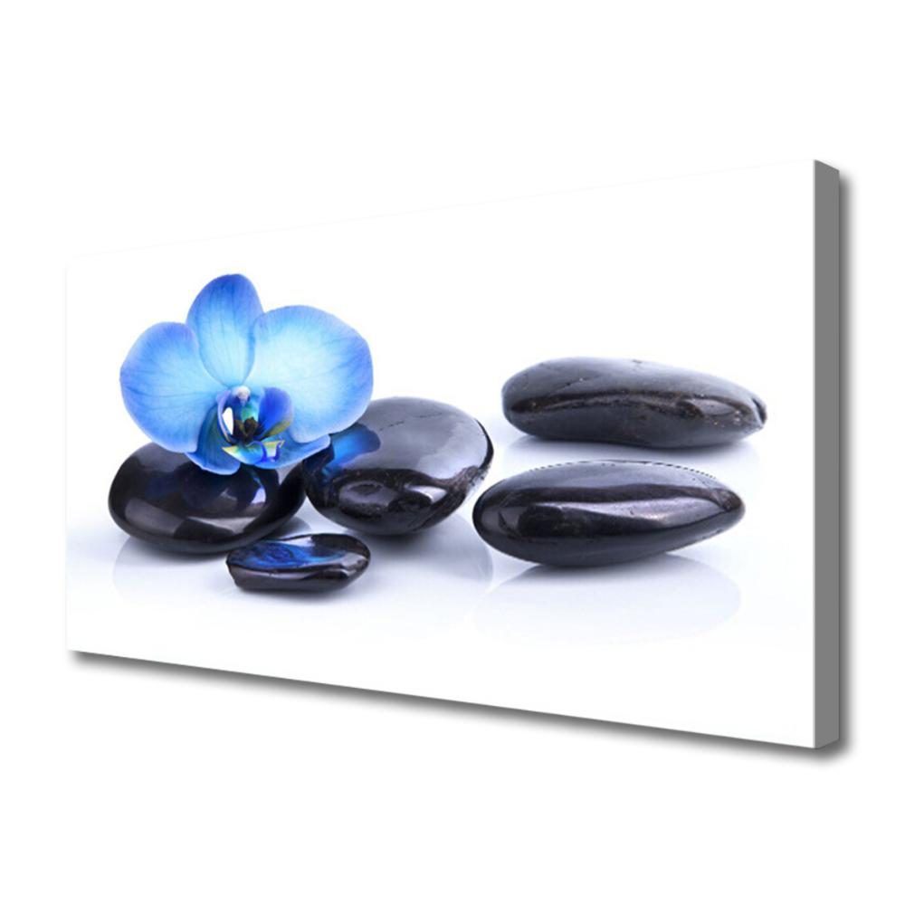 Flower Stones Art Blue Black Canvas print relaxing
