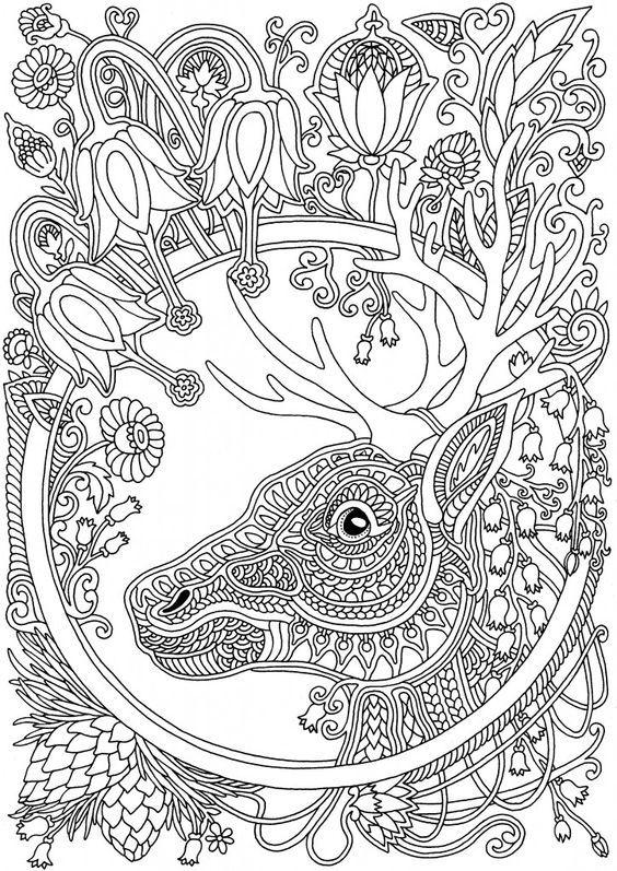 Pin de Ame Martin en coloring animals | Pinterest | Colores, Dibujos ...