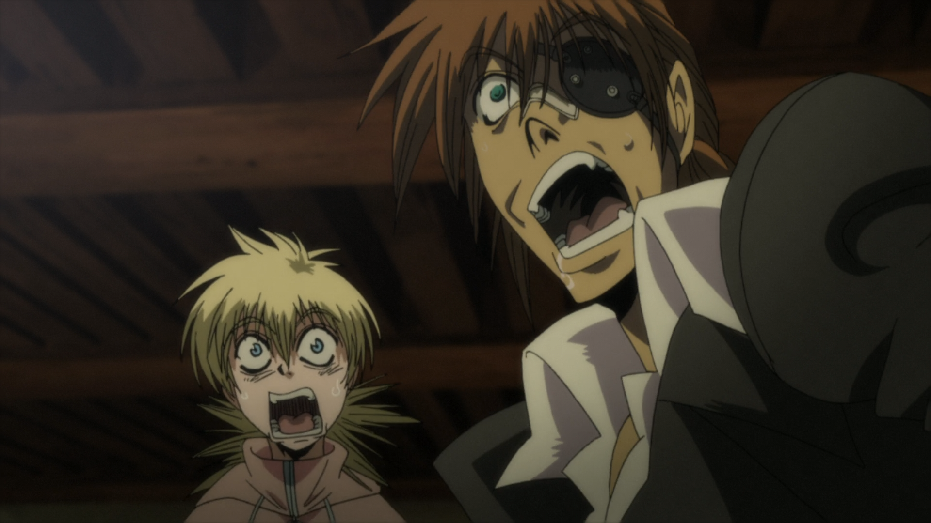 Hellsing Hellsing Ultimate 4 I liked these two together