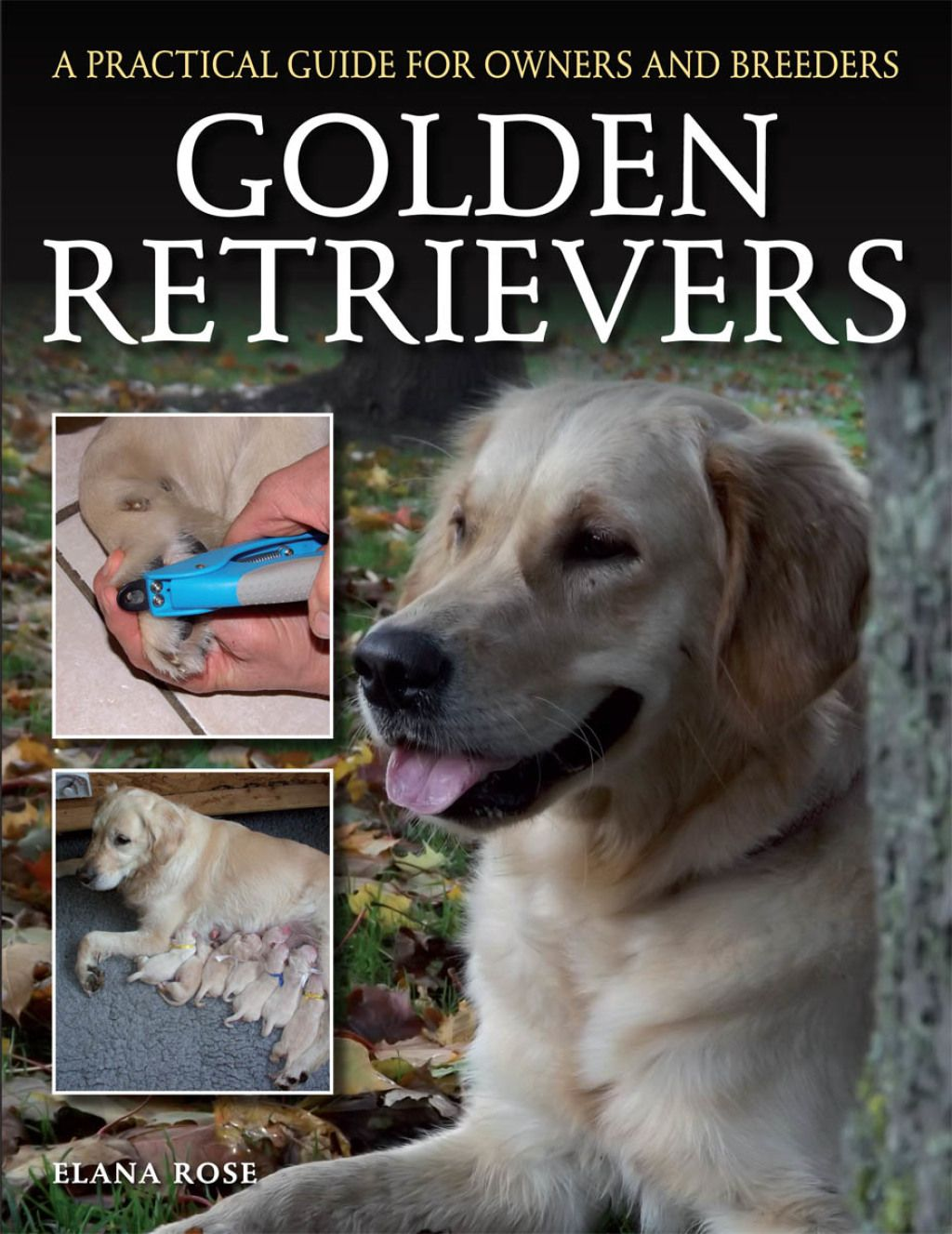 Golden Retrievers Ebook Dog Owners Dogs Rescue Dogs