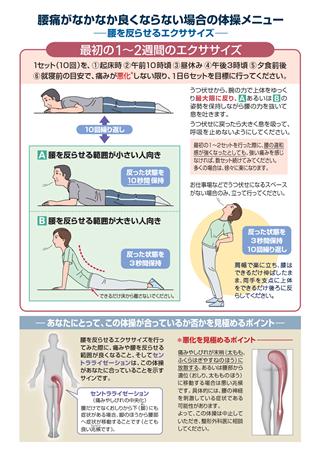 ためして ガッテン 腰痛 体操
