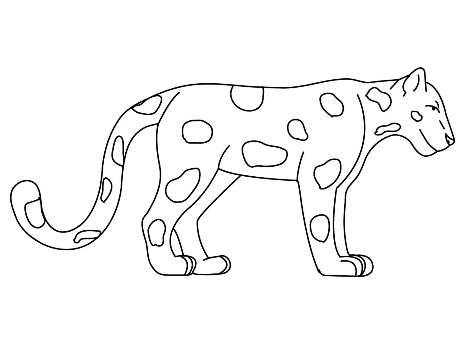 Jaguar Coloring Pages To Print Jaguar Coloring Pages To Print Fresh Jaguar Outline Free Printable Animal Coloring Pages Jaguar Animal Rainforest Animals