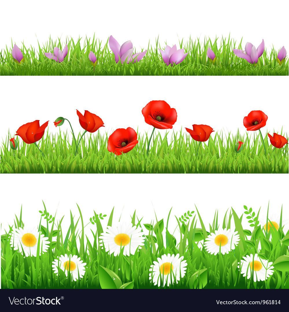 Gerber poppy daisy field banners. Download a Free Preview