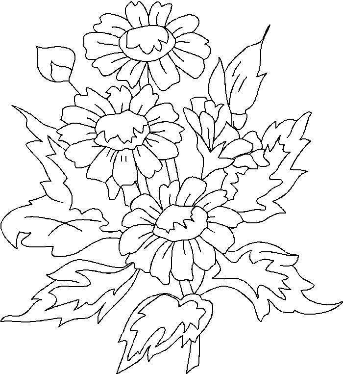 Disegni Floreali Da Colorare Fredrotgans