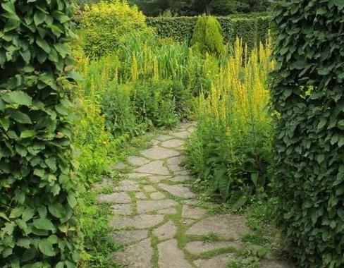 Le parc du château de Beauregard (Loir-et-Cher) La chambre « jaune - chambre d agriculture du loir et cher