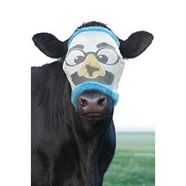 Groucho Cow Fly Mask