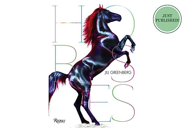 Horses Coffee Table Books Home Accents Pinterest