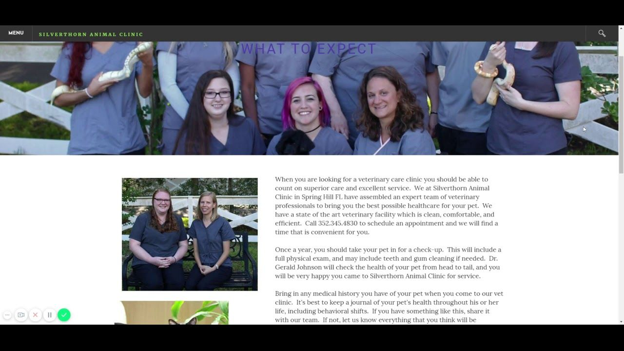Silverthorn Animal Clinic 14263 Powell Road, Spring Hill ...