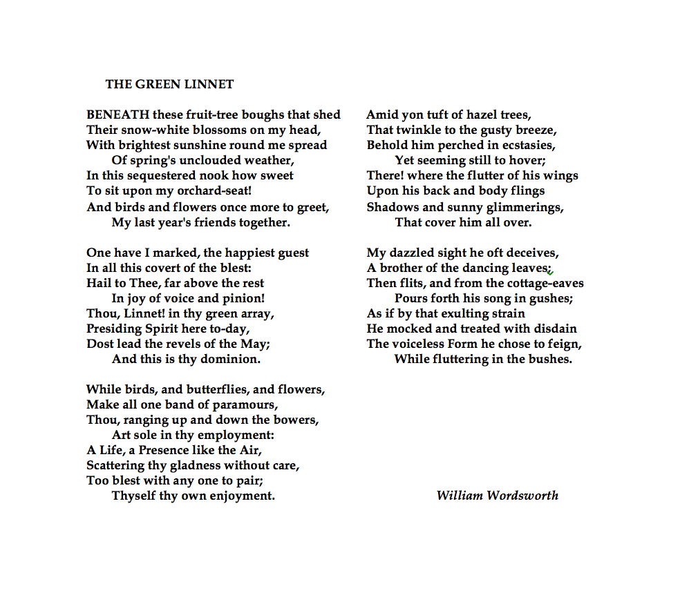 William Wordsworth The Green Linnet Wise Words What I Meaning Of Wandered Lonely A Cloud By