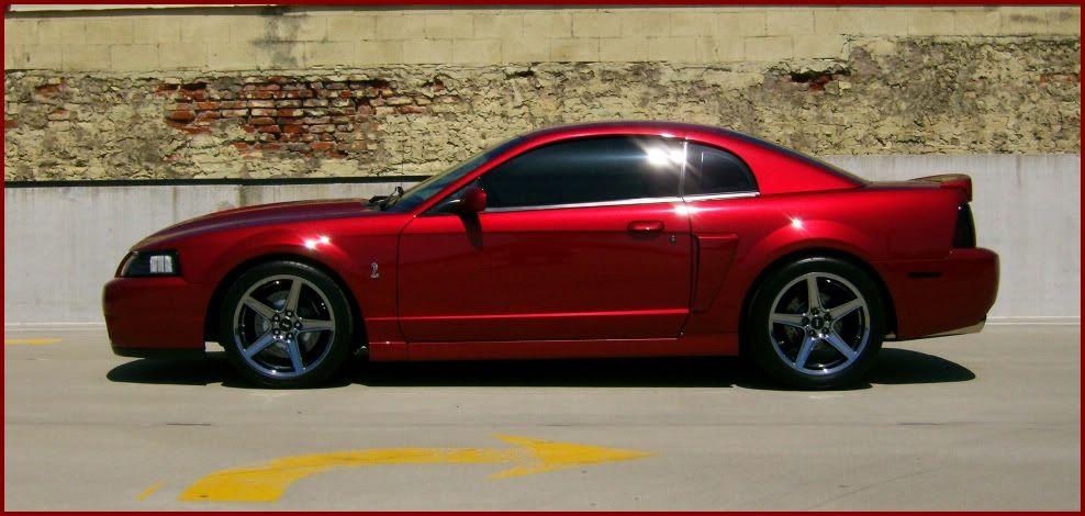 Saleen 2 Jpg 988 470 Mustang 2003 Mustang Mustang Gt