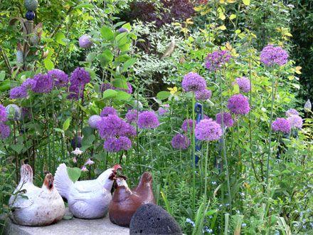 Pin by brigitte peglow on BRIGITTE PEGLOW, mein Garten, meine - mein garten rtl