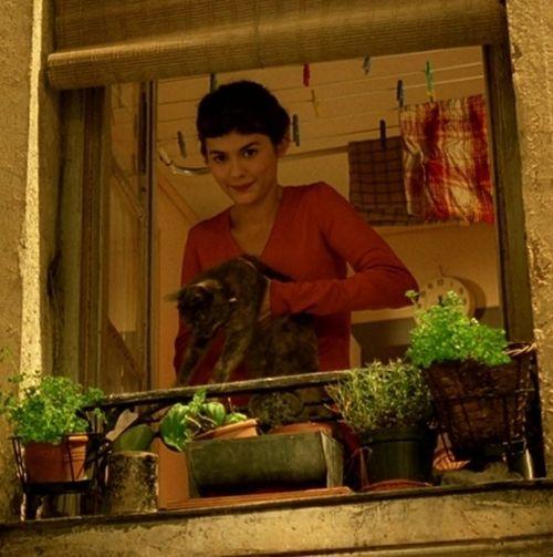 Amélie tiene de repente la extraña sensación de estar en total armonía consigo misma. En ese instante todo es perfecto: la suavidad de la luz, el ligero perfume del aire, el pausado rumor de la ciudad. Inspira profundamente y la vida ahora le parece tan sencilla y transparente que un arrebato de amor, parecido a un deseo de ayudar a toda la humanidad, la empapa de golpe.
