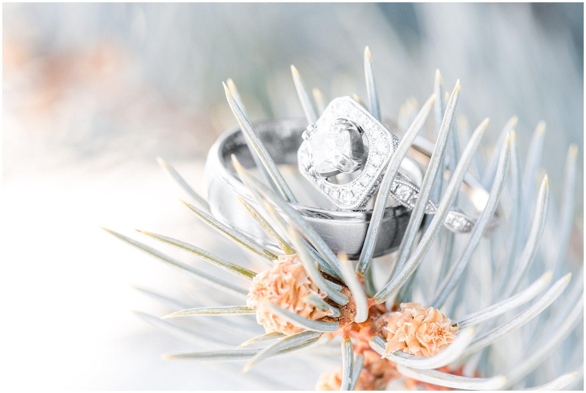 Top Utah Wedding and Couples Photos 2019 Temple wedding