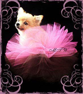 pink & brown tutu for Sofie & Piggy