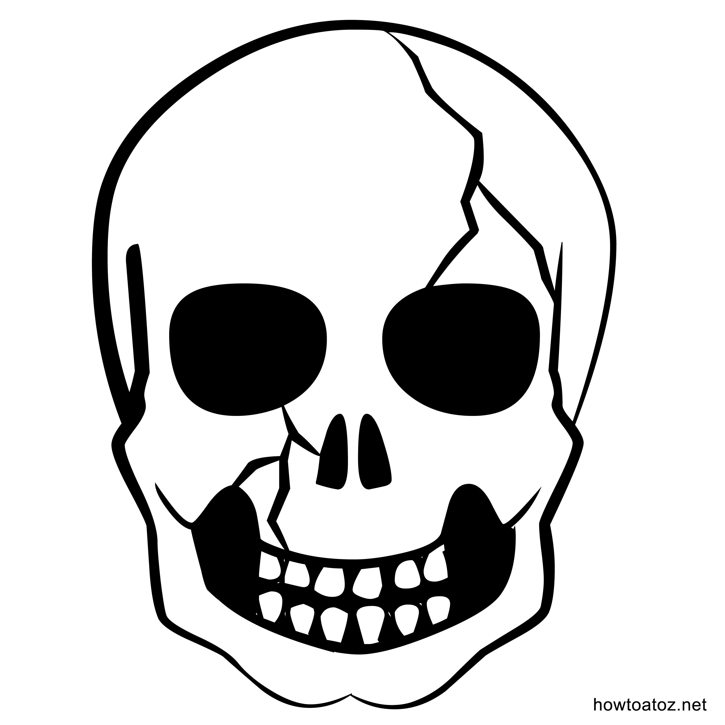 Image Result For Skull  Halloween    Skeletons