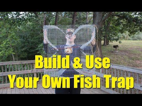 Build a fish trap and catch catfish bait four leaf for Bait fish trap