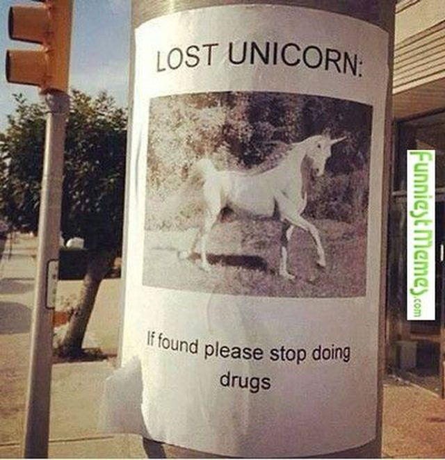 20 Ridiculous Unicorn Memes That Will Make You Lau