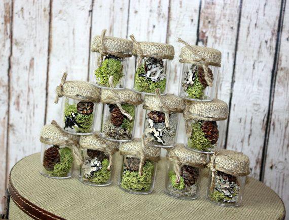 Wedding Favors Rustic Seedlings