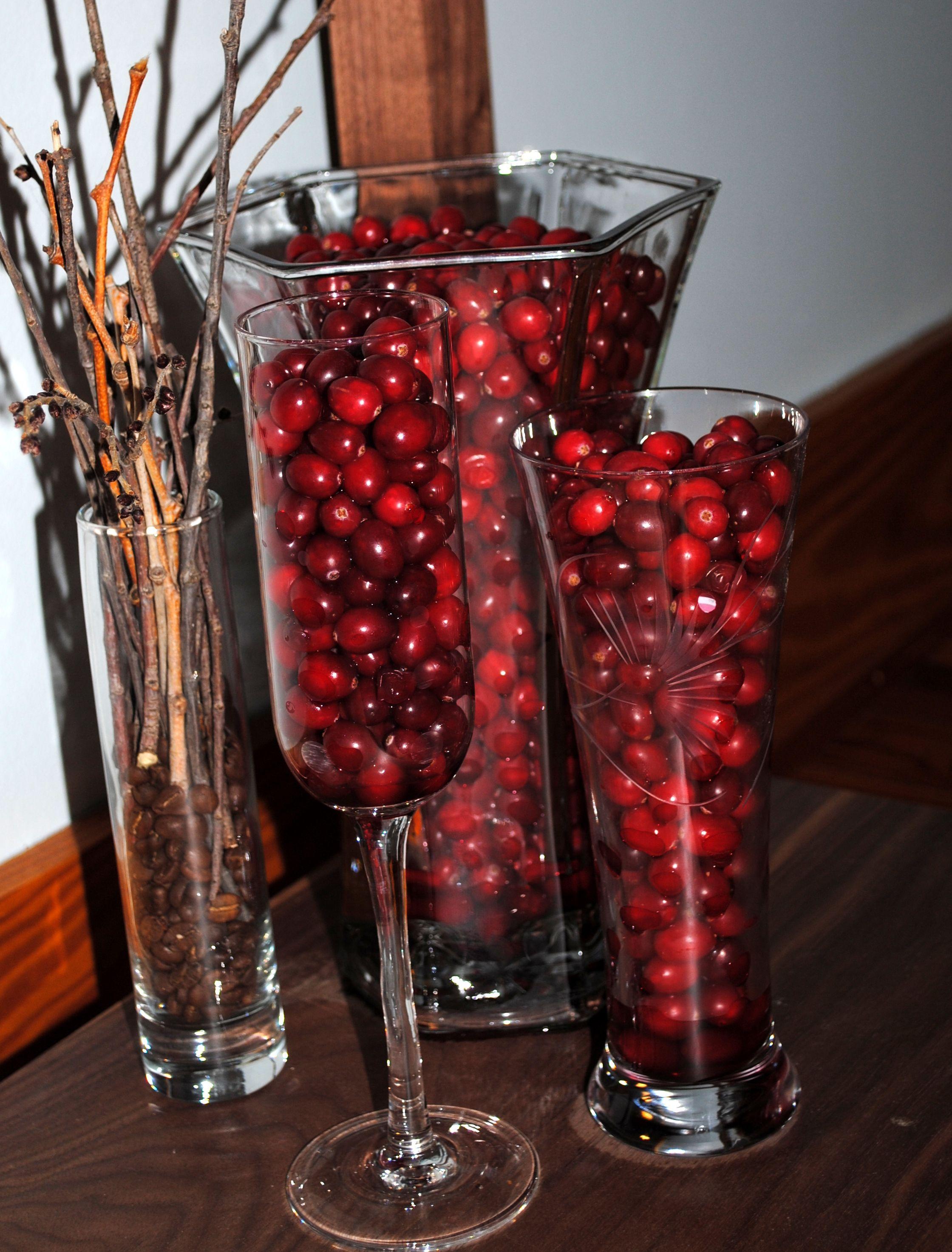 Cranberry Vase Filler Home Decor Walls Centerpieces