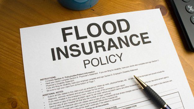 8 Levee Failure Survival Tips Flood Insurance Cheap Car