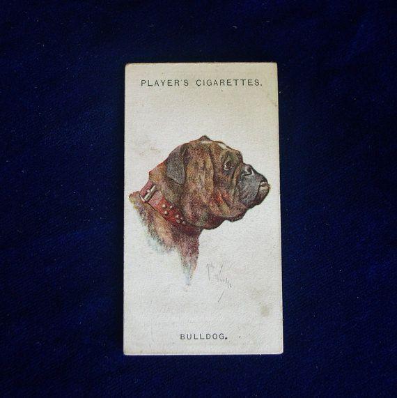 1929 Bulldog Art Player's Cigarette Trading Card, Imperial Tobacco Co., Great Britain Ireland