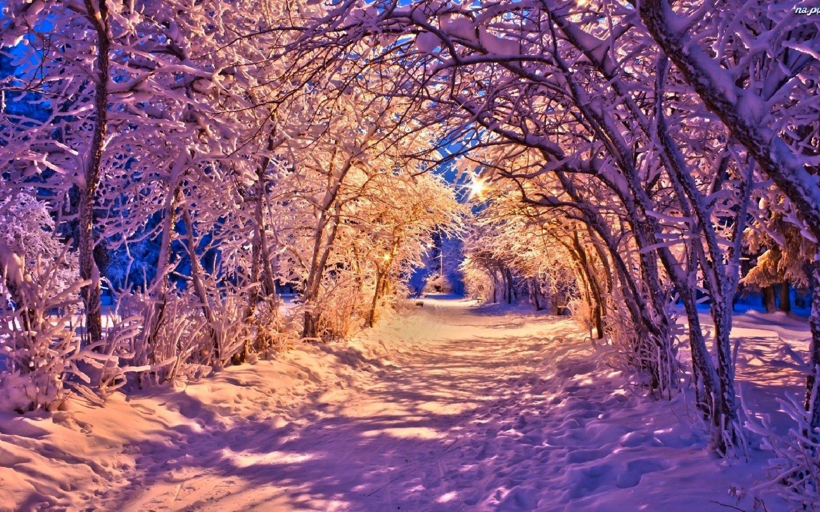 Download Wallpaper Nature Winter Bench Park Lanterns Lights Snow Road Trees Nature Resolution 1680x105 Winter Landscape Winter Wallpaper Winter Scenes Hd wallpaper winter nature forest path